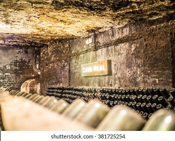Sant Sadurni, Spain - April 18, 2014: The cava real (Royal Cava) inside the Freixenet cava.
