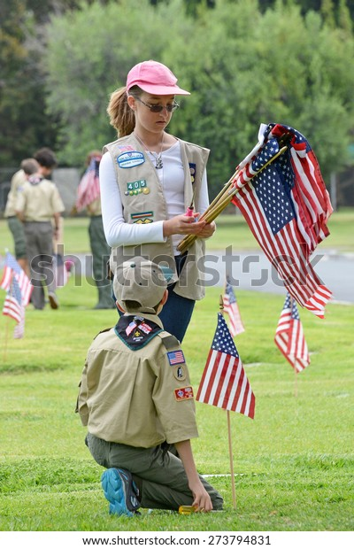 SANTA ANA, CA - MAY 25, 2013:  Boy Scouts and Girl Scouts of Orange County place flags next to the graves of veterans in preparation for Memorial Day services at Fairhaven Memorial Park and Mortuary.