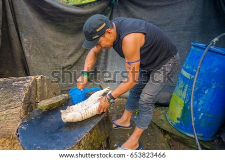 Santa Ana, Ecuador - May 07, 2017: Closeup of an unidentified shaman with a hat cleaning an armadillo for lunch using a knife