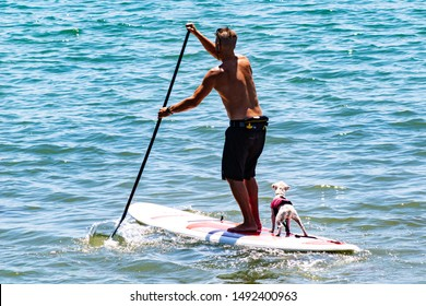 Santa Barbara, CA/ USA, August 08, 2019: man enjoying the sun with is pet friend on a paddle board on the Pacific Ocean