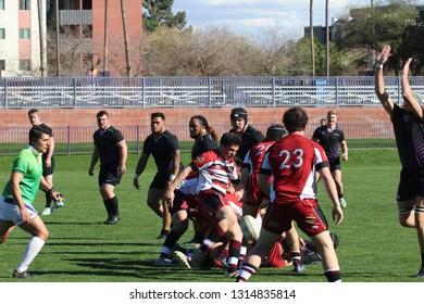 Santa Clara Broncos Rugby at GCU Stadium in Phoenix, Arizona/USA February 16,2019.