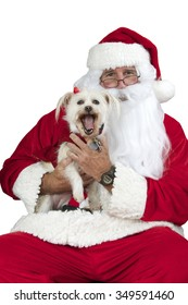 Santa Claus with white long haired small dog Isolated on white background