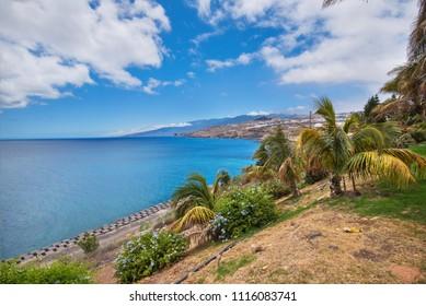 Santa Cruz de Tenerife coastline viewed from palmetum park,  Canary islands, Spain.