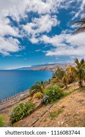 Santa Cruz de Tenerife coastline, viewed from palmetum park, old refinery in the background, Canary islands, Spain.