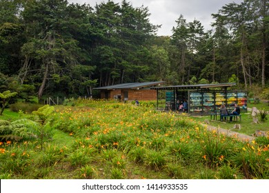 Santa Elena, Antioquia / Colombia. May 5, 2017. The Arví Ecotourism Regional Park is an ecological natural park located in northeastern Medellín. Located in Santa Elena correigimiento