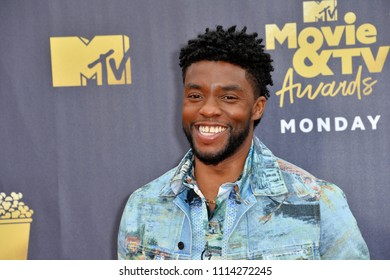 SANTA MONICA, CA - June 16, 2018: Chadwick Boseman at the 2018 MTV Movie & TV Awards at the Barker Hanger, Santa Monica Airport