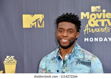 SANTA MONICA, CA - June 16, 2018: Chadwick Boseman at the 2018 MTV Movie & TV Awards at the Barker Hanger, Santa Monica Airport