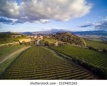 Sant'Angelo in Colle, Italy / Siena - Sept 25 2019 : Sant'Angelo in Colle, an old village near Montalcino, Val D'Orcia, Siena, Tuscany. Absorbed in Brunello vineyards.