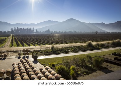 SANTIAGO, CHILE - An Authentic Chilean Winery Seen From a Vantage Point During a Sunny Day