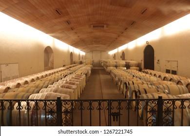 SANTIAGO, CHILE - DEZ 5, 2018: Concha y Toro Mansion, country house, garden and Vineyard
