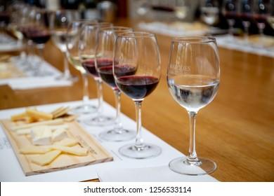 SANTIAGO, CHILE - NOV 29, 2018: Wine degustation in Concha y Toro Mansion and Vineyard.