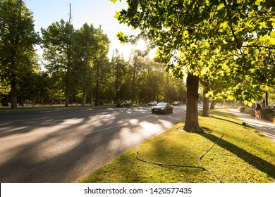 Santiago, Region Metropolitana, Chile - December 11, 2018: Traffic in the Forestal Park at downtown with a setting sun.