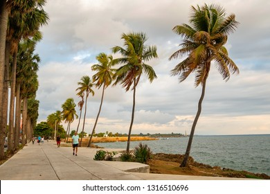 SANTO DOMINGO - DOMINICAN REPUBLIC - January 13, 2019 : People walking in Malecon of Santo Domingo Dominican Republic lovely decorated with palm trees and sea.