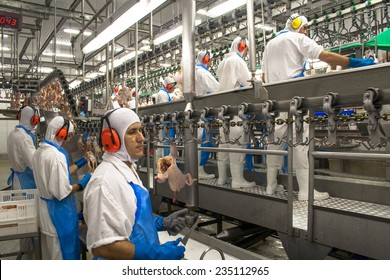 SAO JOSE, SANTA CATARINA, BRAZIL, SEPTEMBER 16, 2009: processing factory chicken,