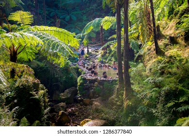 SAO MIGUEL, AZORES, PORTUGAL - OCTOBER 11, 2018: People enjoy bath in natural thermal pools, spa of Caldeira Velha near Ribeira Grande town, Sao Miguel island, Azores, Portugal