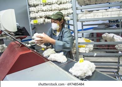 Sao Paulo, Brazil, August 10, 2010. Work in Cotton Classification Laboratories of BM&F - BOVESPA, in Sao Paulo.