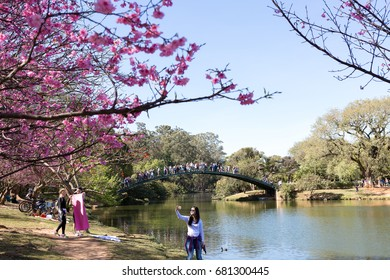 Sao Paulo, Brazil. July 16, 2017. The Ibirapuera park in Sao Paulo is one of the favorite places for Paulistas and tourists to stroll.
