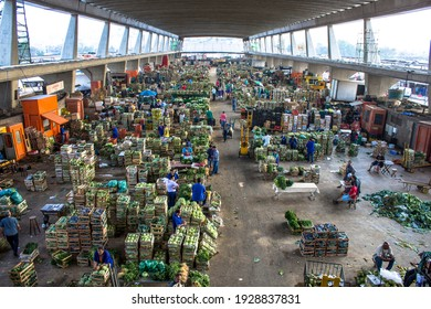 Sao Paulo, Brazil, September 02, 2014. Green leaves vegetables in boxes for fruit trade at CEAGESP (General Warehouse Company of Sao Paulo), in Vila Leopoldina neighborhood, west side of Sao Paulo