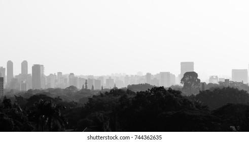 Sao Paulo skyline in black and white, Brazil