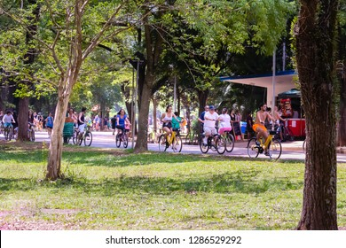 Sao Paulo, SP / Brazil - 01/13/2019: Ibirapuera Park - People visiting the park.