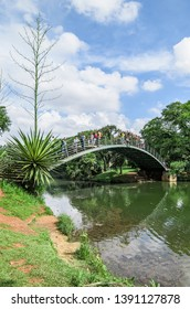 Sao Paulo SP, Brazil - March 02, 2019: Arched metal bridge above the lake of the Ibirapuera park. Bridge known as Ponte Metalica or Ponte Japonesa.