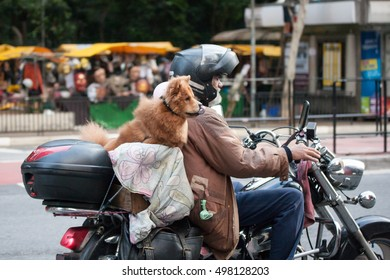 SAO PAULO, SP/BRAZIL: OCTOBER 10TH, 2016 - Man and dog riding motorcycle on Avenida Paulista
