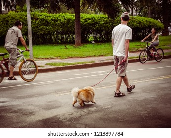 Sao Paulo/SP/Brazil - 01-25-2010: Man walks with his dog, enjoying nature in the mid-afternoon cloudy, in the Park of Ibirapuera