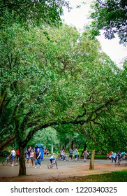 Sao Paulo/SP/Brazil - 01-25-2010: People walking and having fun in Ibirapuera Park in rainy afternoon