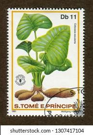Sao Tome and Principe stamp circa 1981: a stamp printed in Sao Tome and Principe shows Colocasia esculenta illustration.