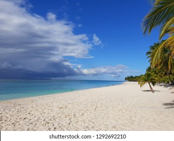 saona island paradise white sand beach with tropical nature with stormy clouds