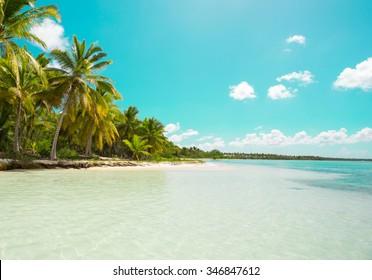Saona Island, Punta Cana, Dominican Republic