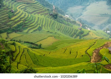 """Sapa"" ... City of mountains and rice paddies. The city is at the very edge of Vietnam. But the hidden beauty of miracles. Imagine that. How good would it be if we were to smell the grass, rice fields"
