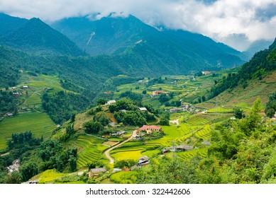 Sapa Town & Rice Terrace Vietnam