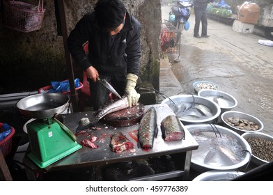 SAPA, VIETNAM - FEBRUARY 22, 2013: Unidentified man gut and clean a fish in the rural market of Sapa, Northern Vietnam