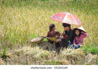 SAPA, VIETNAM - SEP 29: Unidentified mother and children resting after hard work on terrace rice field  at Tu Le, Lao Cai, Vietnam. On Sep 29, 2013.