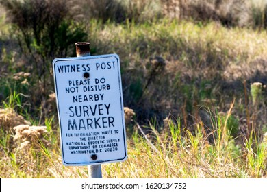 Sapelo Island, Georgia, USA - January 16, 2020: A witness post noting a nearby  survey marker, which is key to taking proper bearings and the measurement of property, is seen in the lowcountry.
