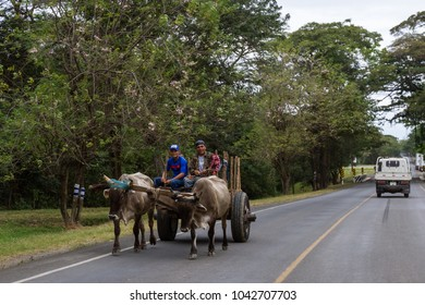 Sapoa, Nicaragua - January 19: Young happy men riding on an ox cart on the Pan-American highway in Nicaragua. January 19 2018, Sapoa, Nicaragua