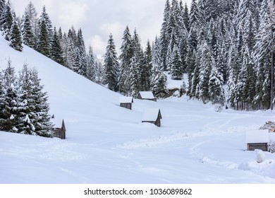 Sappada, Friuli. Landscapes and winter shelters. Immersed in the snow.