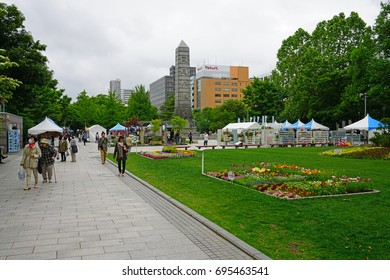SAPPORO, JAPAN -26 JUN 2017- Colorful flower displays in Odori Park in the center of Sapporo. Sapporo is the largest city in the Northern island of Hokkaido and the fifth largest city in Japan.