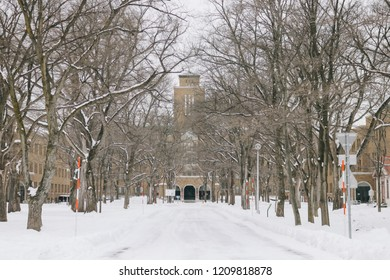 Sapporo, Japan - January 6, 2018: Hokkaido University (Hokudai) is a Japanese national university in Sapporo, Hokkaido. It is one of the top research and teaching universities in Japan.