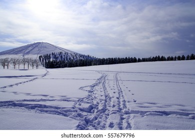 Sapporo suburbs of winter scenery