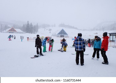 Sapporo,Japan - Feb 17,2017 : Many people is snowboading or skiing in the skii resort in winter season during snow falling in Hokkaido , Japan. The weather is very freeze but the activities is so fun.