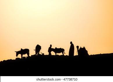 Saqqarah Egypt