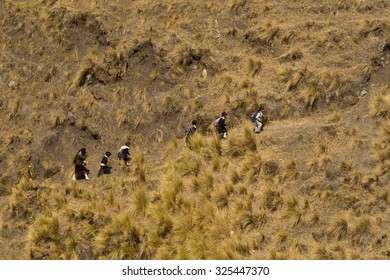 Saquisili, Ecuador - 17 October 2012: Mother With Kids Getting Back From The School On A Steep Slope In Ecuadorian Andes In Saquisili On October 17, 2012