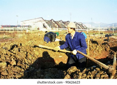 SARAJEVO, BOSNIA - JAN 15: Workers dig fresh graves in the shadow of the 1984 Winter Olympic stadium at the Lion cemetery in Sarajevo, Bosnia, on Monday, January 15, 1993.