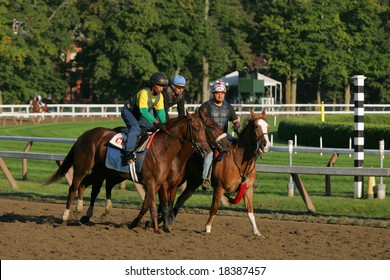 SARATOGA SPRINGS - August 23:  A Beautiful Morning for Workouts on the Main Track Travers Day August 23, 2008 in Saratoga Springs, NY.