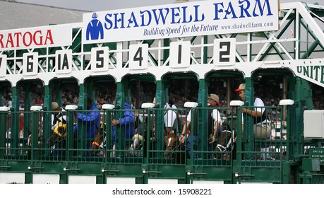 SARATOGA SPRINGS - August 7: Close up of the Starting gate Showing Horses and unidentified Assistant Starters before the start of the Fourth race August 7, 2008 in Saratoga Springs, NY.