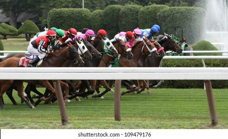 SARATOGA SPRINGS - JUL 20: A crowded field races on the turf in a maiden race on Jul 20, 2012 at Saratoga Race Course in Saratoga Springs, NY. Winner is Junior Alvarado (on rail) and Alwaysinmycircle.