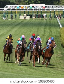 """SARATOGA SPRINGS - JUL 21: The field storms down the turf course in a maiden race on Jul 21, 2012 at Saratoga Race Course in Saratoga Springs, NY. Eventual winner is Joel Rosario (blue cap) and """"Lea""""."""