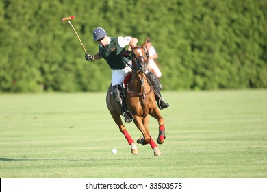 SARATOGA SPRINGS - JULY 10: Number 2 of Sugar Maple chases the ball during the opening match of the season at Saratoga Polo Club July 10, 2009 in Saratoga Springs, NY.